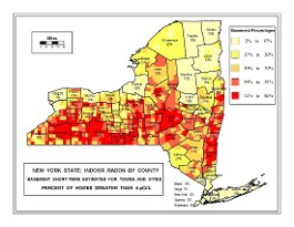 new york state heatmap